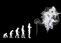 human-being -evolved-from -apes