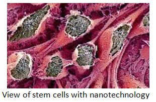 View-of-stem-cells-with-nanotechnology