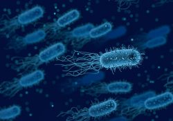complex-human-relationship-with-bacteria